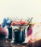 Fiori variopinti in vasi di fiori sul davanzale della finestra Fotografie Stock Libere da Diritti