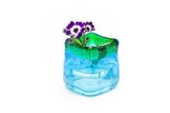 Fiori in vaso di vetro blu immagini stock