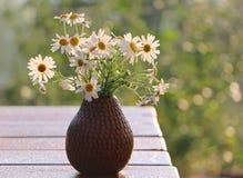 fiori in vaso su fondo di legno fotografie stock libere da diritti