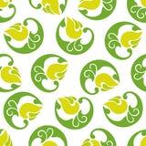 Fiori verde chiaro del modello astratto senza cuciture su un backgro bianco Fotografia Stock