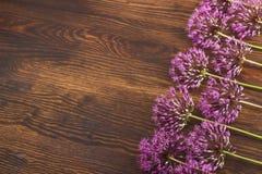 Fiori viola sul bordo di legno Immagine Stock