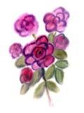 Fiori viola verniciati in acquerello Fotografia Stock