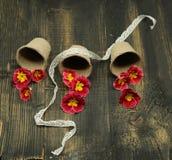 Fiori vulgaris, gialli e rossi della primula della primaverina del giardino, composizione conservata in vaso e creativa su fondo  immagini stock