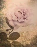 Fiorisca fiori d'annata neri di progettazione i bei fatti con colore f Fotografia Stock