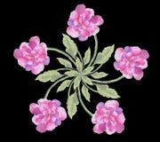 Fiorisca i fiori della peonia del mazzo su una carta da parati senza cuciture dell'acquerello variopinto nero del fondo Fotografia Stock