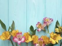 Fiorisca il alstroemeria che fiorisce su un fondo di legno di colore, struttura Fotografia Stock Libera da Diritti
