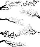 Fiorisca l'accumulazione degli elementi di disegno royalty illustrazione gratis