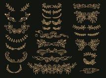 Fiorisca l'insieme dei divisori del testo di vettore Abbellimenti d'annata floreali dorati, corone illustrazione vettoriale