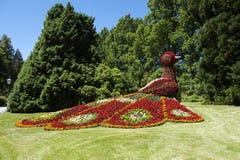 Fiorisca l'uccello della statua sull'isola/Germania di Mainau fotografie stock libere da diritti