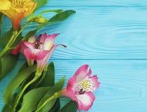 Fiorisca la bellezza di fioritura decorativa su un fondo di legno, struttura di disposizione della pianta di alstroemeria del maz Fotografia Stock Libera da Diritti