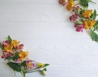 Fiorisca la decorazione di fioritura della tavola della natura del modello della struttura di alstroemeria su di legno bianco Immagini Stock Libere da Diritti