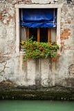 Contenitore di fiore, Venezia, Italia Immagini Stock