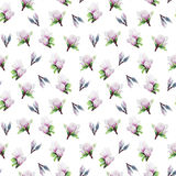 Fiorisce il modello della magnolia su un fondo bianco isolato Fotografia Stock