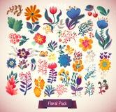 Fiorisce l'insieme decorativo dell'illustrazione piante di scarabocchio Fotografie Stock