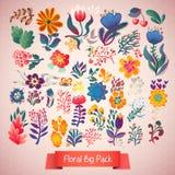 Fiorisce l'insieme decorativo dell'illustrazione piante di scarabocchio Fotografia Stock Libera da Diritti