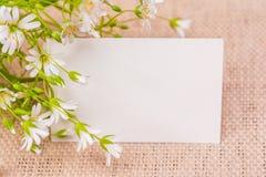 Fiorisce la cartolina d'auguri Immagini Stock