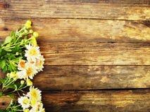 Fiorisce la prospettiva luminosa Composizione nel fiore Autunno Fotografia Stock