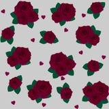 Fiorisce le rose, la rosa rossa e le foglie verdi Metta la raccolta Isolato su priorità bassa bianca Reticolo Fotografia Stock