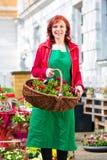 Fiorista che consegna canestro dei fiori o della viola Immagini Stock Libere da Diritti