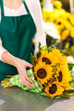 Fiorista che prepara il commesso del fiore del mazzo dei girasoli Fotografia Stock