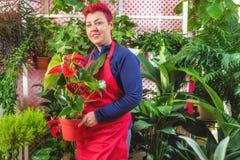 Fiorista felice della donna, prendente accordi e sorridente alla macchina fotografica Proprietario di negozio del fiore di piccol immagine stock