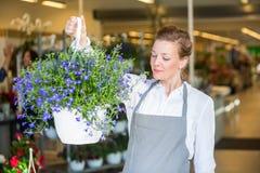 Fiorista femminile Smelling Purple Flowers in negozio Immagini Stock Libere da Diritti
