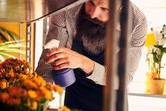 Fiorista maschio professionista con la barba e tatuaggio sulla sua uniforme d'uso della mano che prende cura dei fiori nel negozi Fotografie Stock