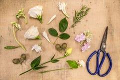 Fiorista sul lavoro, Florist& x27; attrezzatura di s, disposizione dei fiori immagini stock