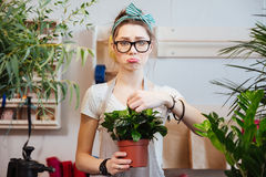 Fiorista triste della donna che tiene pianta verde in vaso da fiori al negozio Fotografie Stock