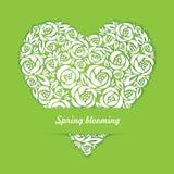 Fioritura floreale della primavera con l'ombra Immagini Stock Libere da Diritti