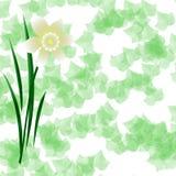 Fioritura sull'edera illustrazione di stock