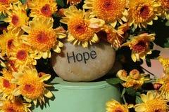 Fioriture di speranza fotografia stock