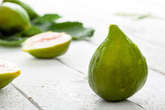 Fioroni Figs Stock Photography