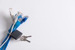 Fios do Internet com acoplamento de prata nele fotografia de stock
