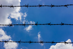 Fios farpados de encontro ao céu azul Imagens de Stock Royalty Free