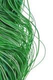Fios verdes no fundo branco foto de stock