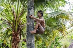 Fiqure incomum no safari & na Marine Park de Bali imagem de stock
