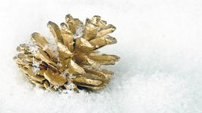 Fir apple in the snow. As a christmas decoration stock video footage
