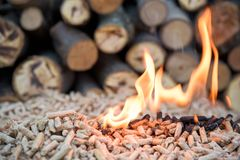 Biomass in flame. Fir biomass in flomes - renewable energy royalty free stock photography
