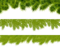 Fir borders. For christmas greeting cards. Vector illustration Stock Photos