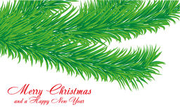 Fir branch. Christmas greetings card with fir tree branch and a wish of Merry Christmas and a Happy New Year,  illustration additional Stock Photography