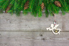 Fir branch with angel Stock Photos