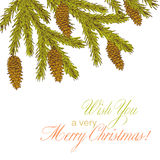 Fir branch. Christmas background with fir branch. Vintage holiday frame. Vector illustration Royalty Free Stock Image