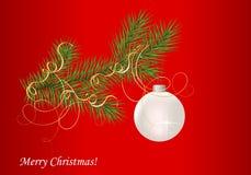 Fir branch and Christmas ball Stock Image