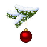 Fir branch with Christmas ball. Snowy fir-tree branch with red Christmas ball Royalty Free Stock Photo