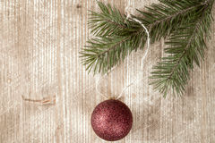 Fir branch and christmas bauble. Stock Images