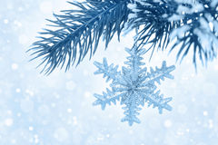 Fir branch with Christmas decoration on blue background, bokeh Royalty Free Stock Photo