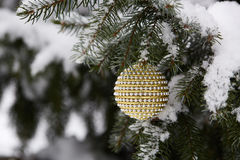 Fir branch with christmas toys. Royalty Free Stock Photo