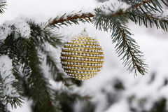 Fir branch with christmas toys. Stock Images