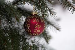 Fir branch with christmas toys. Royalty Free Stock Photos